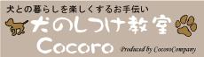 犬のしつけ教室Cocoro -躾は犬が幸せに暮らすためのパスポート!-大阪・池田市・箕面市・豊中市・川西市・伊丹市・尼崎市・西宮市・宝塚市